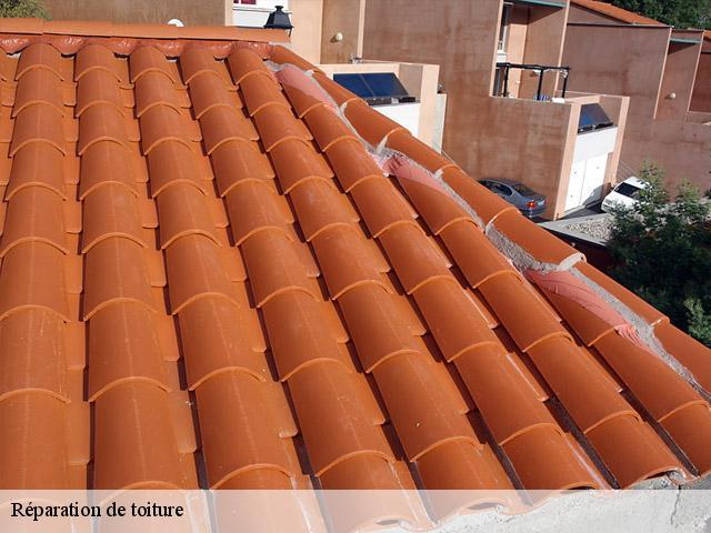 Réparation toiture et remplacement de tuile 13 Bouches du Rhône tél: 04.82.29.39.29